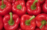 Перец сладкий красный, 280 р/кг