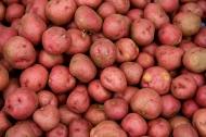 Картофель красный, 55 р/кг