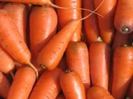 Морковь Каротель, 85 р/кг